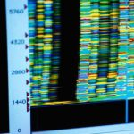 Filaggrin gene mutations through a scientist's eyes