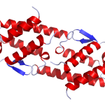 IL5 Crystal Structure