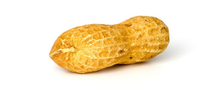 Peanut Envy–Real World Consequence of New Guidelines